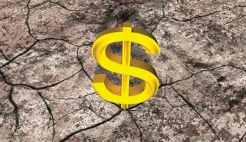 Your attorney's fees on appeal